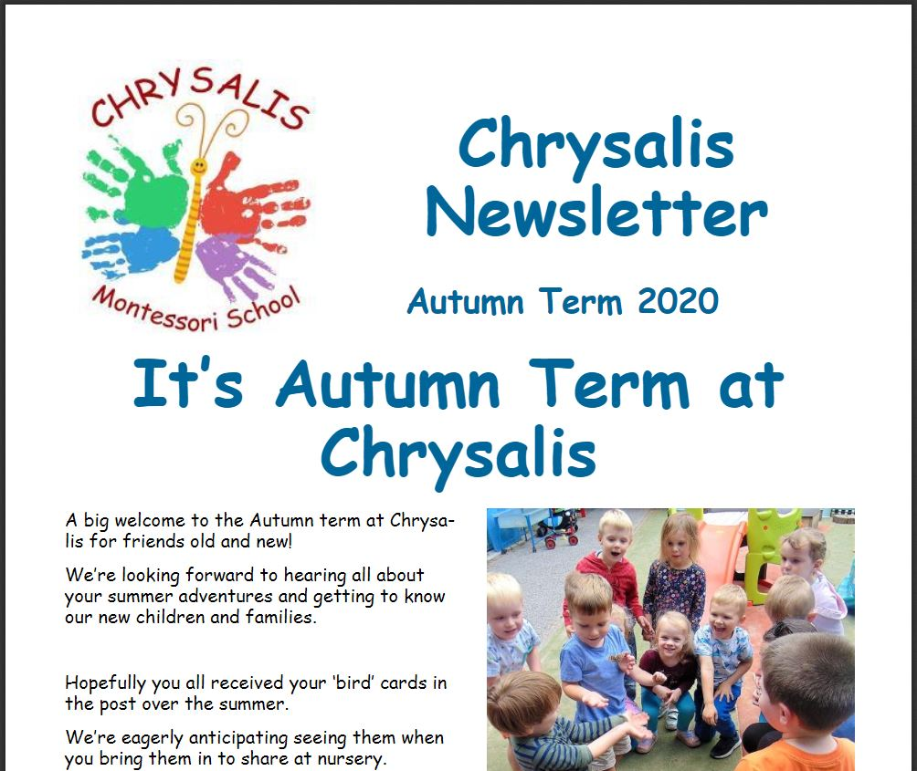 Chrysalis Autumn Term Newsletter